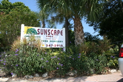 sunscape_nursery